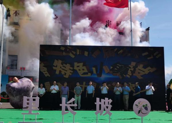 湖南平江:十裏長坡首屆水果採摘節啟動