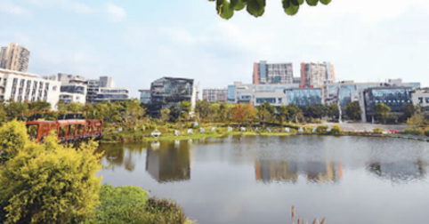 開足馬力,中國軟件産業向前衝