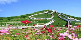 【幸福花開新邊疆】北疆亮麗風景線的綠色生態新圖景