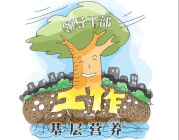 新華網評:把加強頂層設計和堅持問計于民統一起來