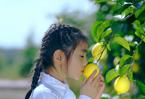 一顆檸檬的雙循環啟示