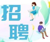 """新疆部分高校以""""雲端""""招聘促就業"""