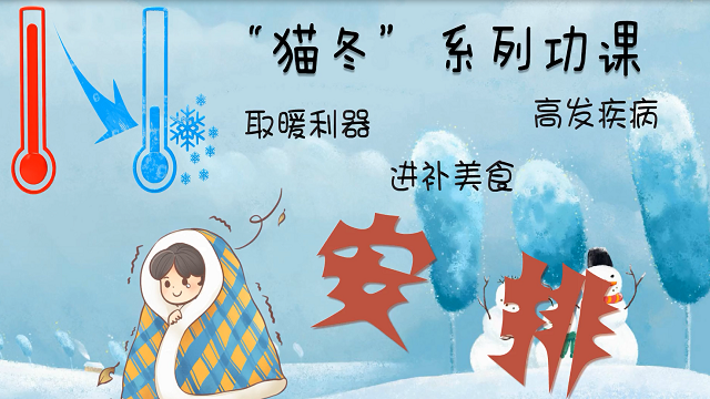 """要""""凍""""真格的了 """"貓冬""""係列功課安排"""