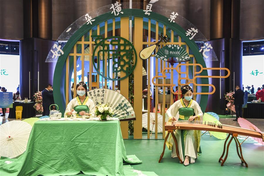 第二屆世界茉莉花大會在廣西南寧舉行