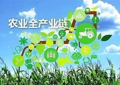 培育發展農業全産業鏈 山東要破解哪些難題?