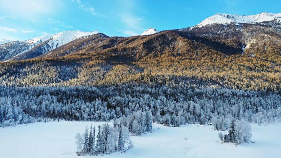 新疆是個好地方|冬日喀納斯