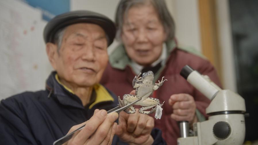 """""""80後""""夫妻的""""探蛙""""人生"""