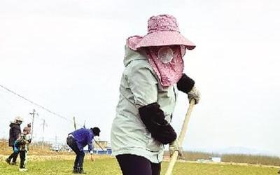蘭州市春耕春播陸續開始 冬春蔬菜實現穩産保供