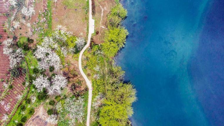 春暖花開鄉村美