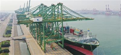 天津港今年新開通首條外貿遠洋幹線