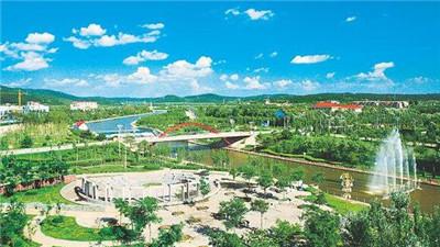 沈陽市沈北新區精準施策壓茬推進項目建設