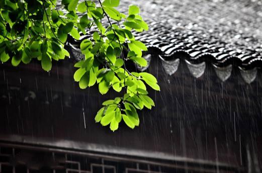 江蘇淮河以南地區6月13日起入梅
