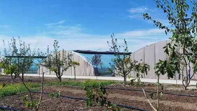 張掖市甘州區:現代農業造就幸福陳寨