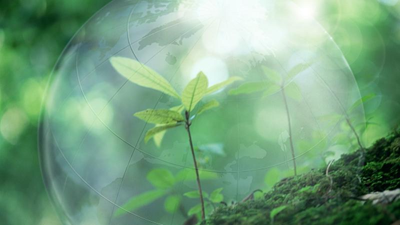 四川省生態環保督察組向成都市反饋督察意見