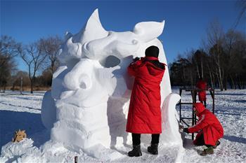 全國雪雕賽:巧奪天工展技藝