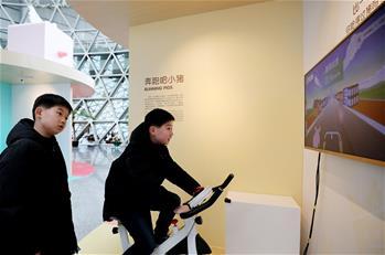上海科技館舉行豬年生肖特展
