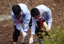 湖南:高中畢業至少要拿到144學分 勞動為必修課佔6學分