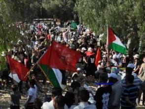 卡塔爾強調結束以色列對巴勒斯坦的佔領