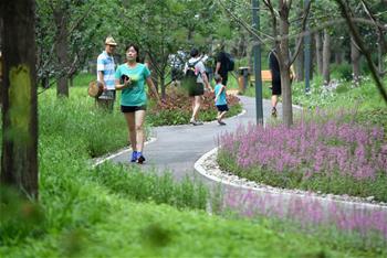 北京東城區第一處城市森林公園建成開放