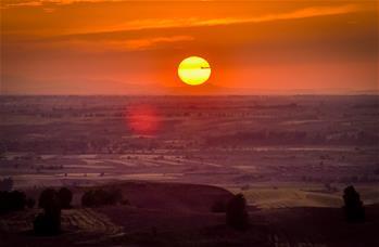 新疆:麥海秋韻