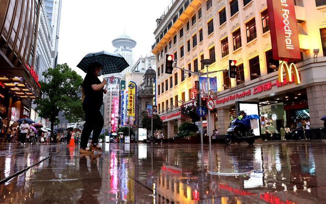 上海進入梅雨期