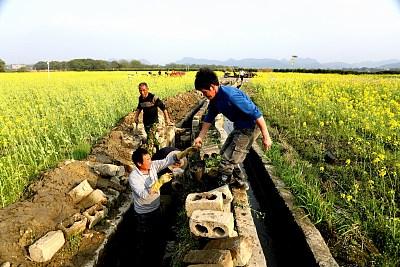 黑龍江:氣象提供精準服務促農增收