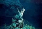 """生命來自海底""""黑煙囪""""又有了新證據"""