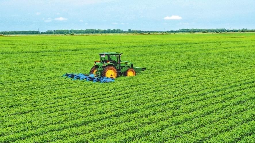 智慧農業藏糧于技