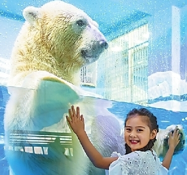 哈爾濱極地館自練內功升級産品