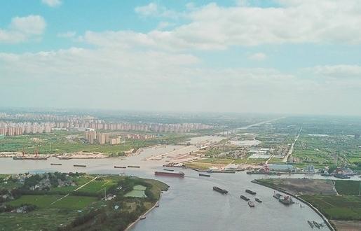 800多條市民金點子 共同暢想五年後上海什麼樣
