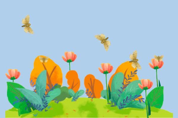 動物百科:舟蛾是什麼蛾?