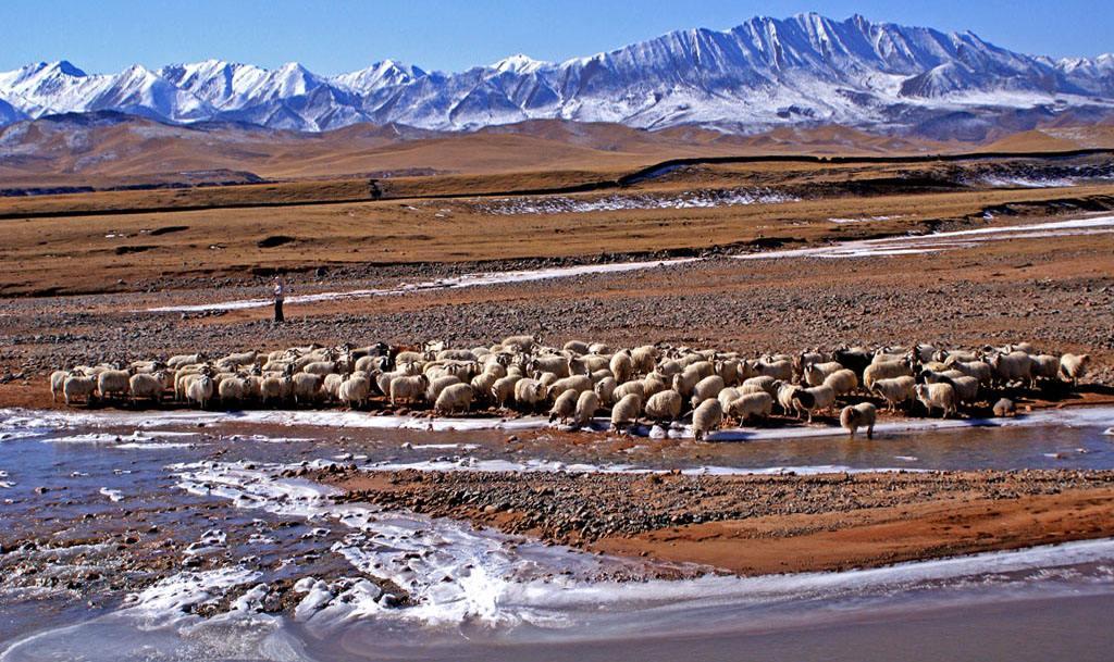 第二次青藏科考初步摸清亞洲水塔水量