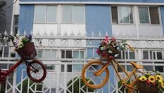 廢舊自行車巧變裝飾品