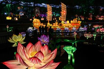 四川自貢國際恐龍燈會亮燈