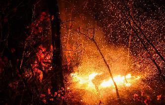 內蒙古全力撲救大興安嶺北大河林場森林火災