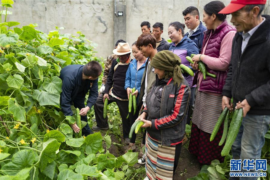 (新华全媒头条·走向我们的小康生活·图文互动)(9)扎西德勒,我们的新家园——西藏易地扶贫搬迁搬出幸福美好新生活